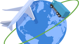 SDC International Movers