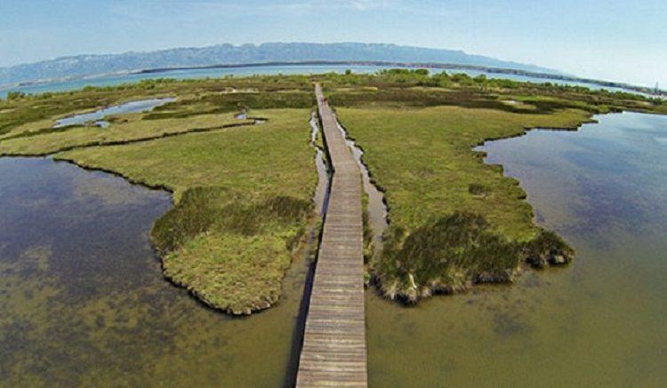Eco Park Nin