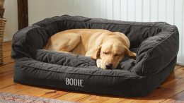 Buy Pet Bedding from PawsBowls