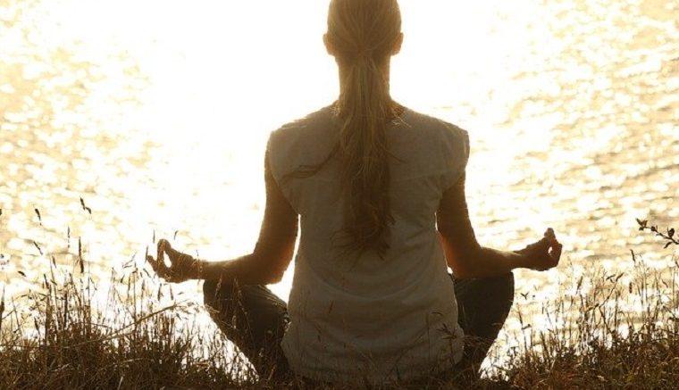 Yoga Certificate Course
